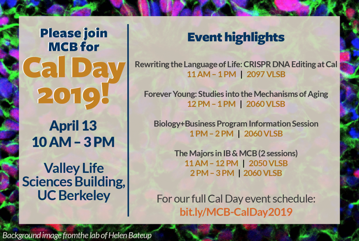 Cal Day 2019 flyer