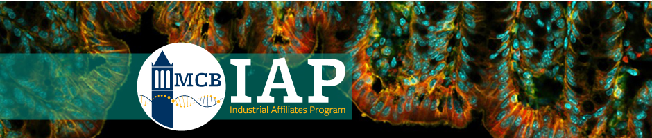 MCB Industrial Affiliates Program