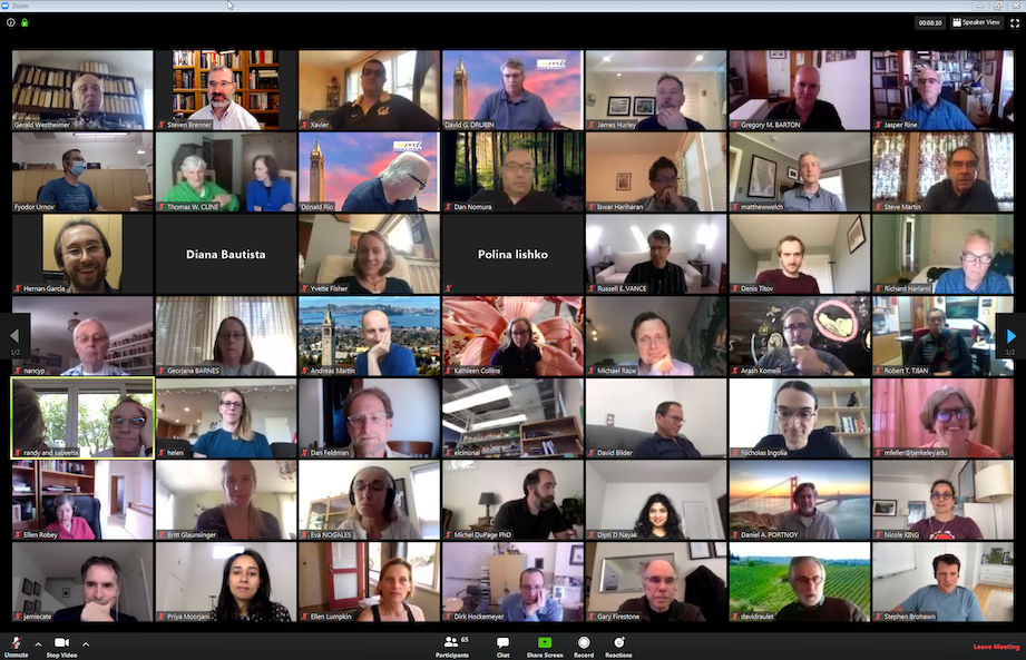 Zoom screen shot of MCB All Faculty Meeting