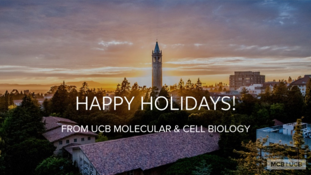 Happy Holidays from MCB!