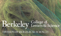 UC Berkeley College of Letters & Science