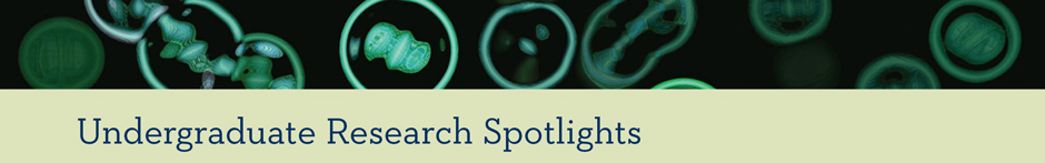 Undergrad Research Spotlights